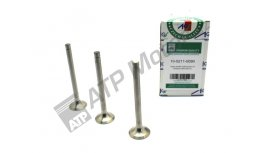Exhaust valve set 3C AGS Premium quality